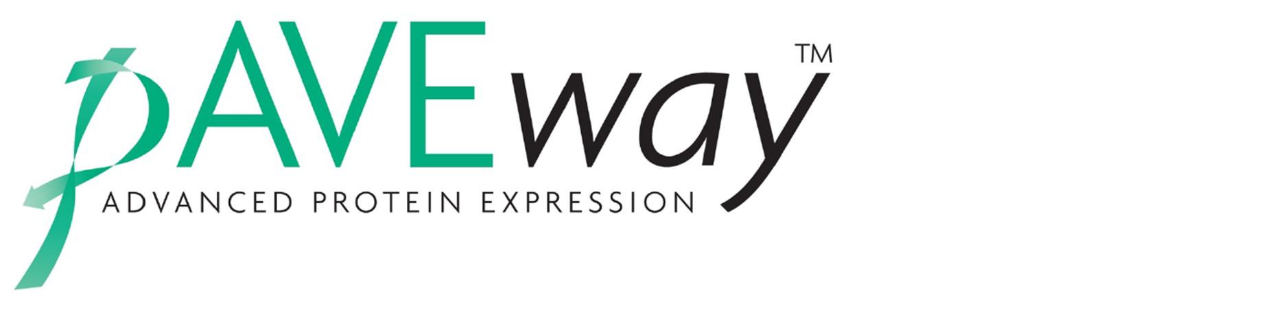 Paveway logo