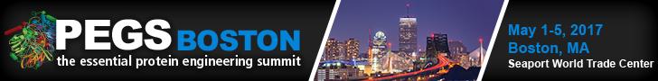 PEGS Boston Summit 2017 banner